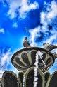 17.05.2015. Владимирская область. Автор фотографий Андрей Маринин. Часть 1.