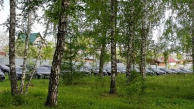 В челябинском лесу нашли десятки новых правительственных Toyota Camry