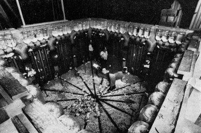 Эксперимент «Вселенная-25»: как рай стал адом.